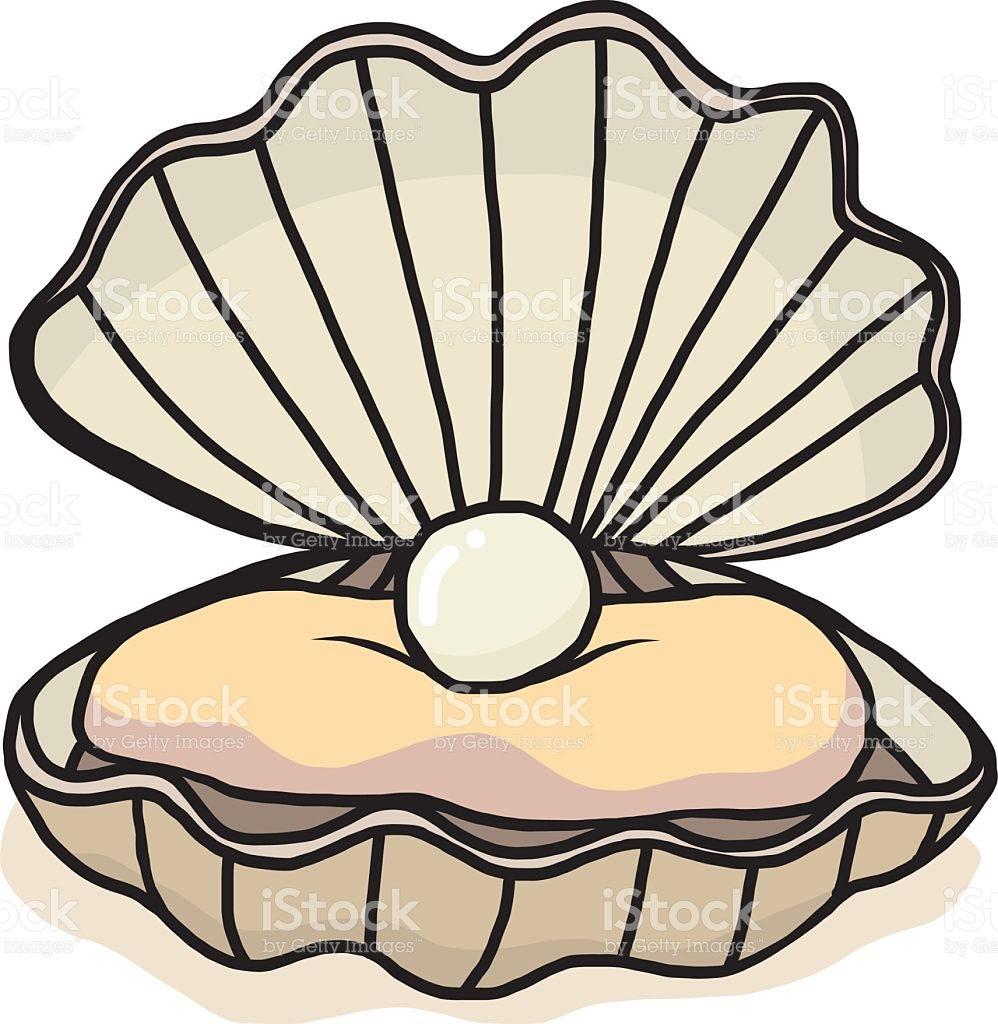 Oyster Shell Clipart
