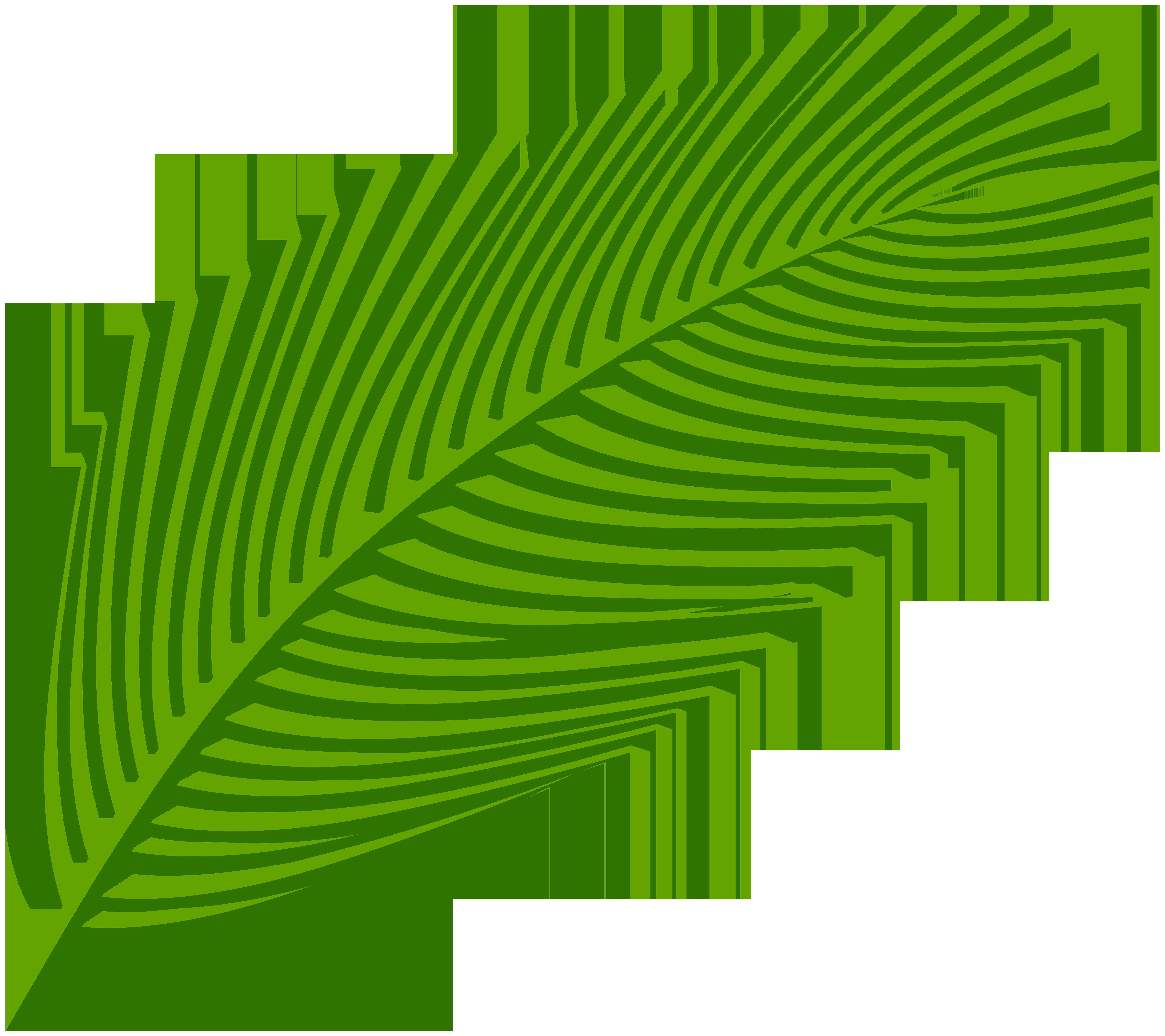 8000x7115 Palm Leaf Transparent Clip Art Imageu200b Gallery Yopriceville