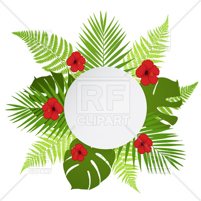 400x400 Round Banner With Palm, Fern And Hibiscus Leaves Royalty Free