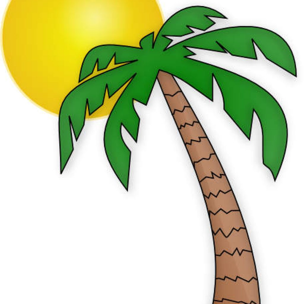 High Quality 1024x1024 Palm Tree Clip Art Free Flower Clipart