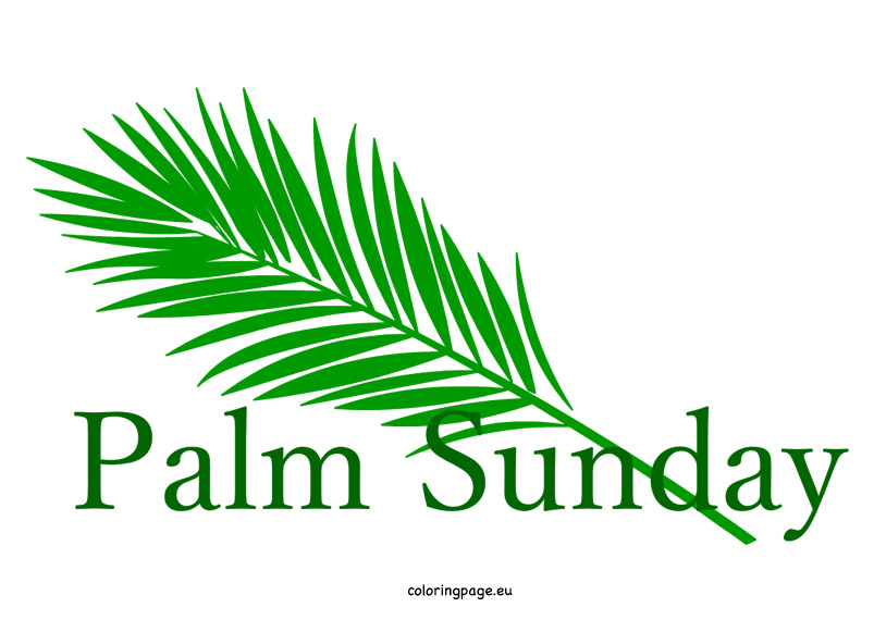803x581 Easter Palm Sunday Clipart Coloring Page