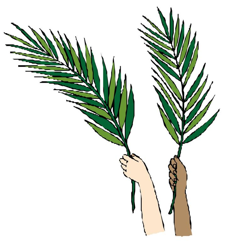 735x772 26 Best Palm Sunday Images On Happy Palm Sunday, Palm