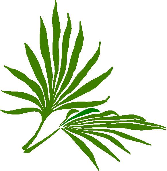 582x596 Palm Sunday Clip Art