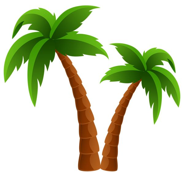 600x566 Clip Art Of Palm Tree Clipart Free Image