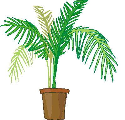 399x384 Palm Tree Clip Art Flowers And Plants