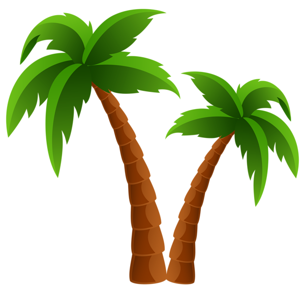 600x566 Two Palm Trees Png Clipart Image