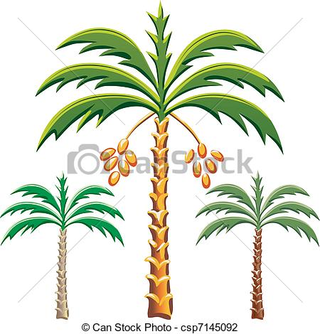 450x470 Palm Tree Drawings Clipart Palm Tree Leaves Black And White