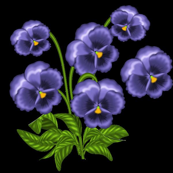 600x600 0 85b62 3b6c72b0 Orig Fise Flower Pictures