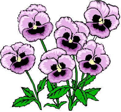 393x364 Pansy Flower Clip Art