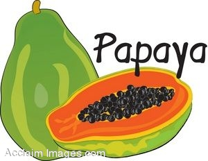 300x232 Clip Art Of A Papaya