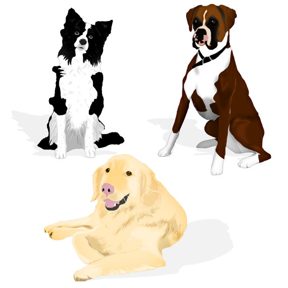 570x570 Commercial Use Instant Download Clip Art Dogs Border Collie