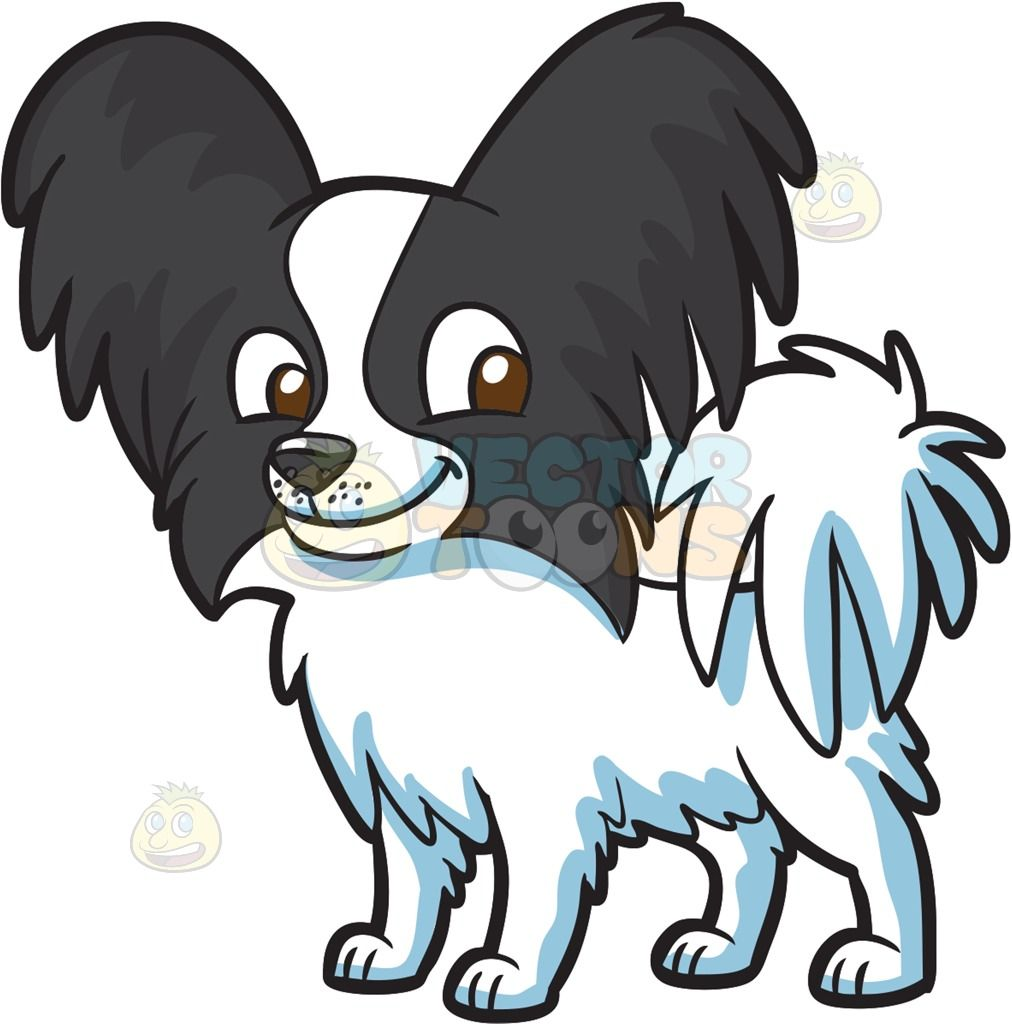 1012x1024 A Puppy With Fluffy Ears And Tail