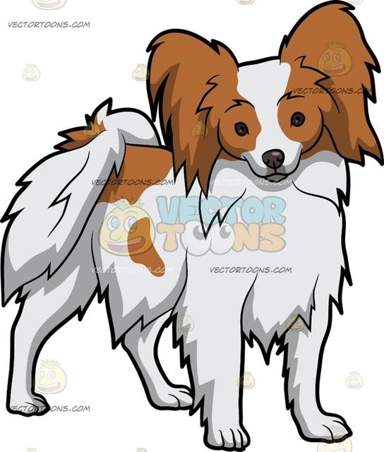 544x640 An Alerted Papillon Dog Cartoon Clipart Vector Toons