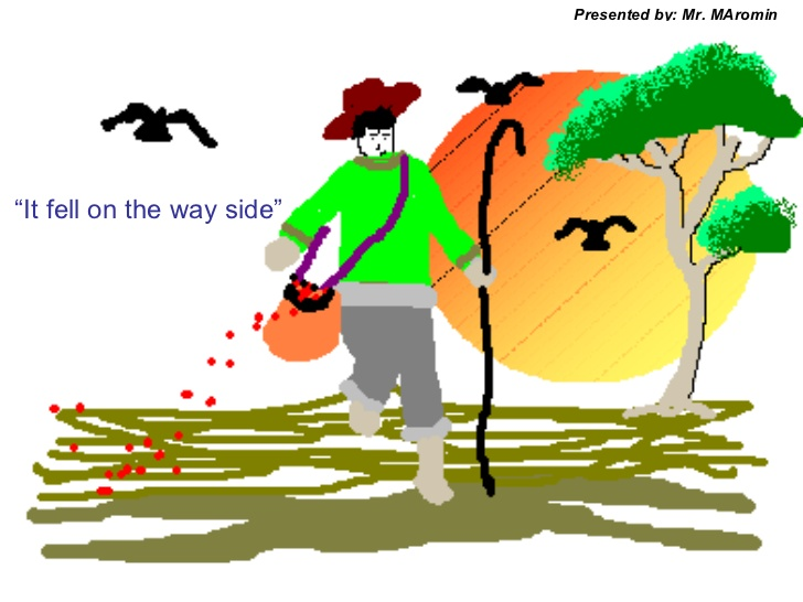 728x546 Parable Of The Seed Sower