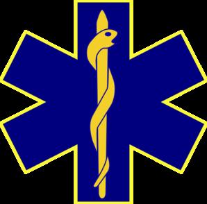 298x294 Paramedic Logo