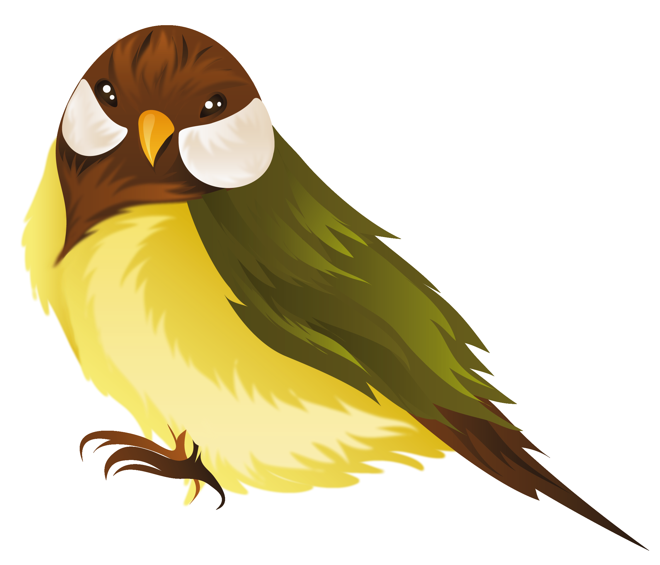 2252x1931 Clip Art Clip Art Of Bird