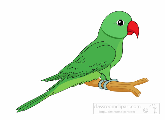 550x400 Parrot Clipart Music Notes Clipart