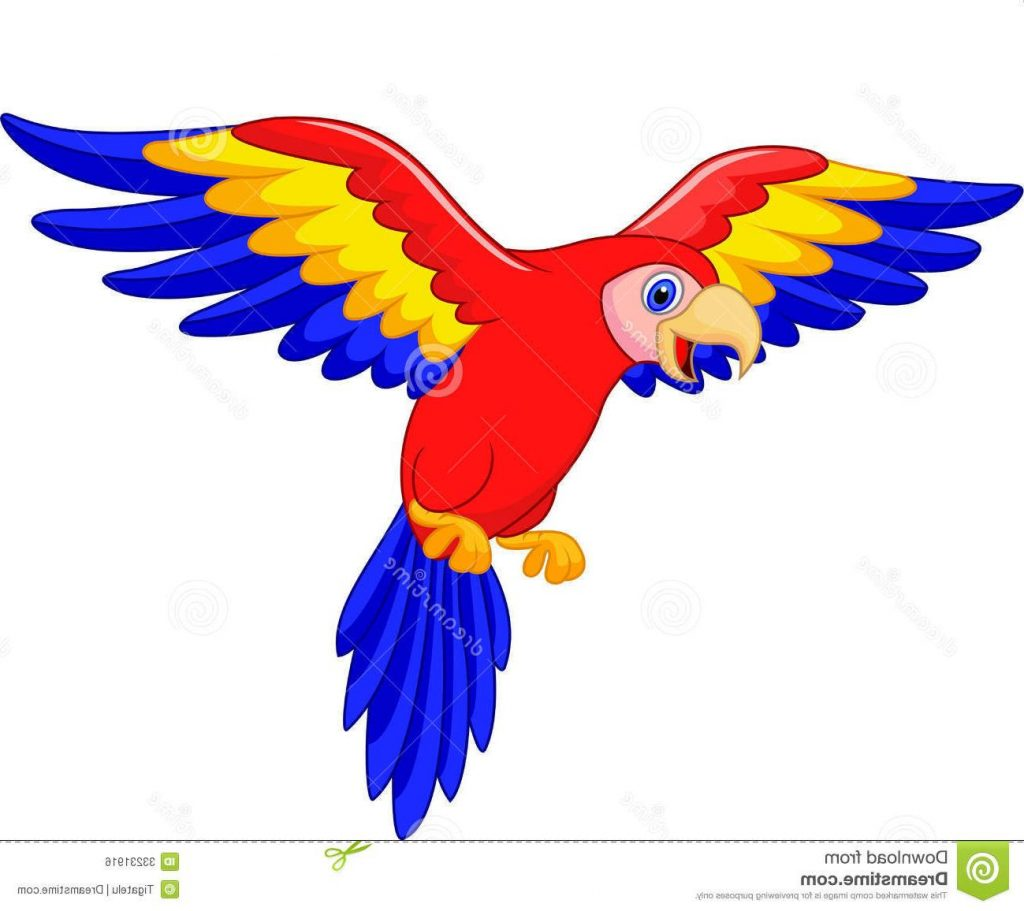 1024x911 Top Cute Parrot Clipart Bird Cartoon Illustration Design