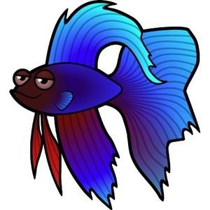 300x300 Betta Clipart Pencil And In Color Fish Clip Art