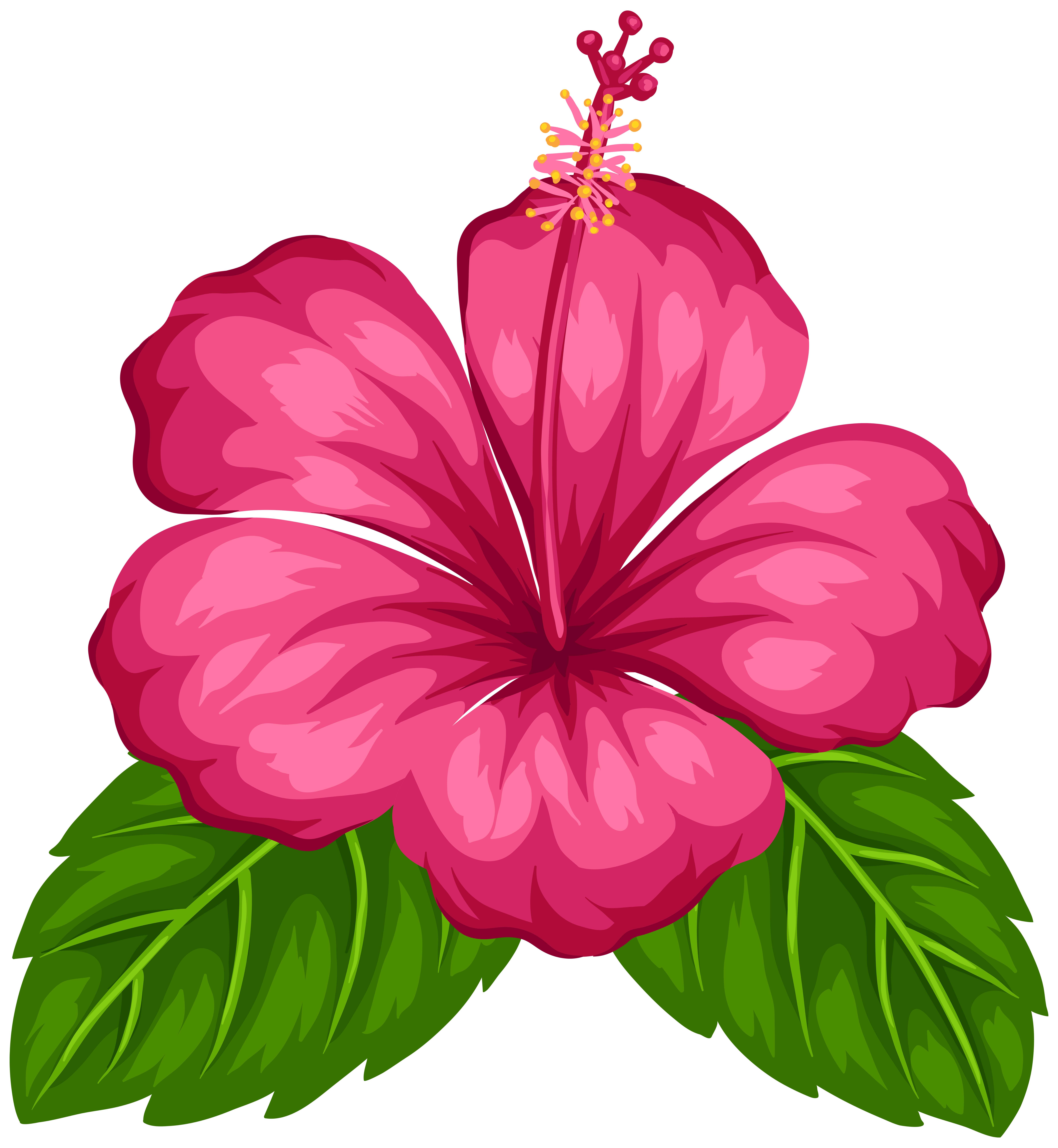 7375x8000 Exotic Flower Png Clip Art