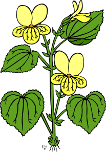 207x297 Floral Plant With Green Leaves Clip Art