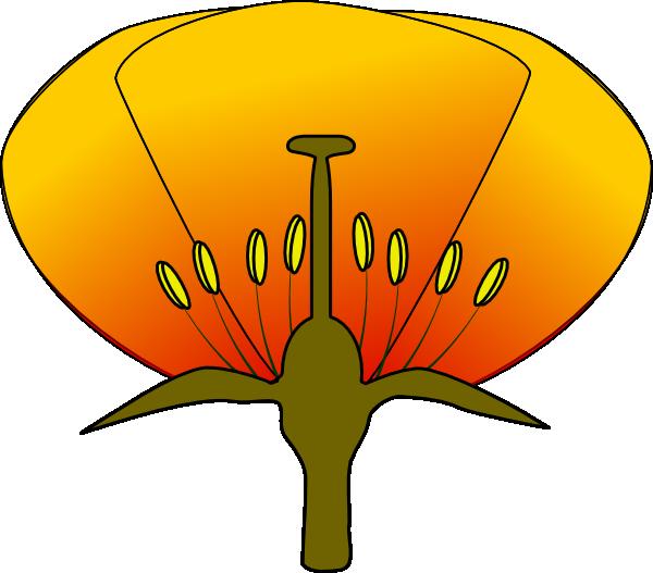 600x527 Flower 9 Clip Art