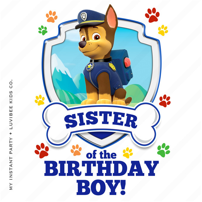690x690 Chase Paw Patrol Sister Of The By My Instant Party Company On Zibbet