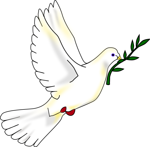 598x583 Peace Dove Pictures