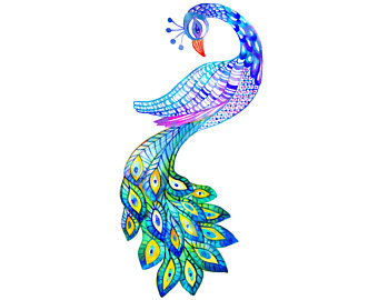 340x270 Collection Of Design Clipart Peacock High Quality, Free