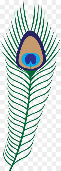 260x720 Feather Peafowl Clip Art