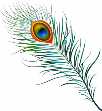 338x368 Free Eagle Feather Vector Clip Free Vector Download (23,219 Free