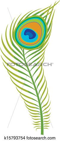 202x470 Peacock Feather Clipart Peacock Feathers, Peacocks And Clip Art