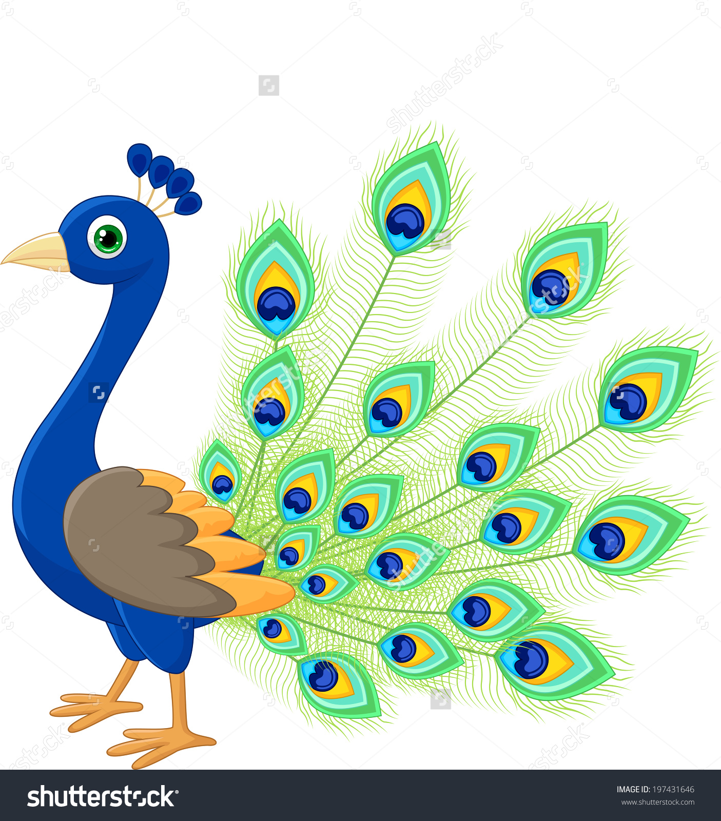 peacock feather clipart at getdrawings com free for personal use rh getdrawings com peacock clipart pictures peacock feather images clip art