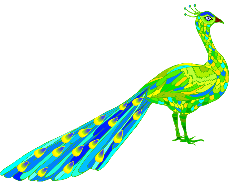 peacock pictures clipart at getdrawings com free for personal use rh getdrawings com