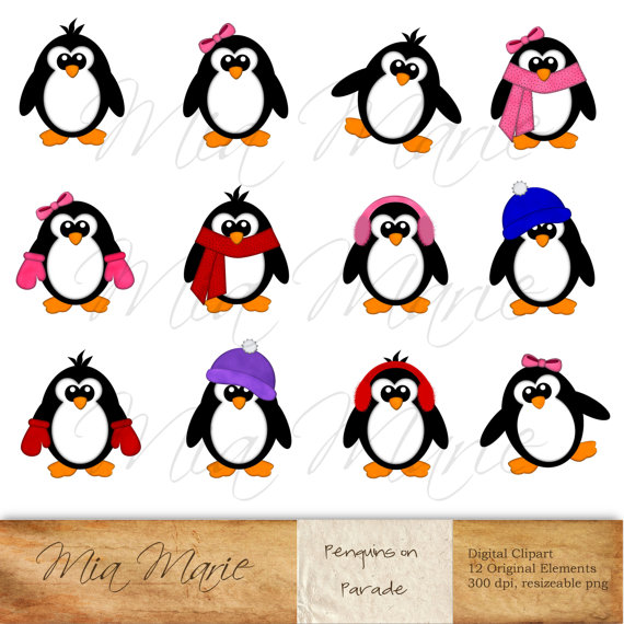 570x570 Instant Download Digital Clip Art Penguin Clipart Penguin