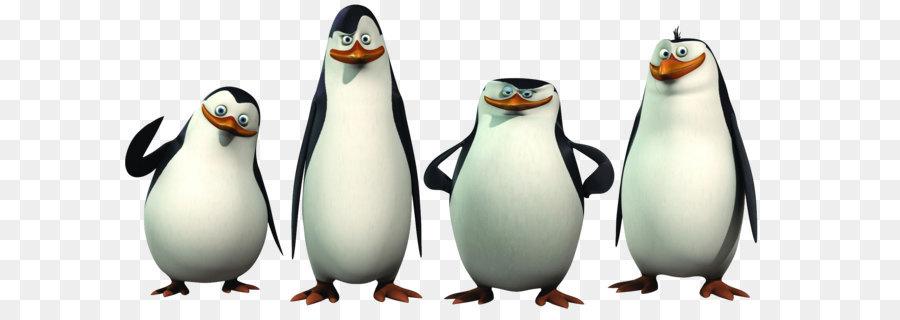 900x320 Penguin Madagascar Animation Clip Art