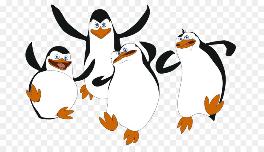 900x520 Penguin Madagascar Drawing Film Clip Art