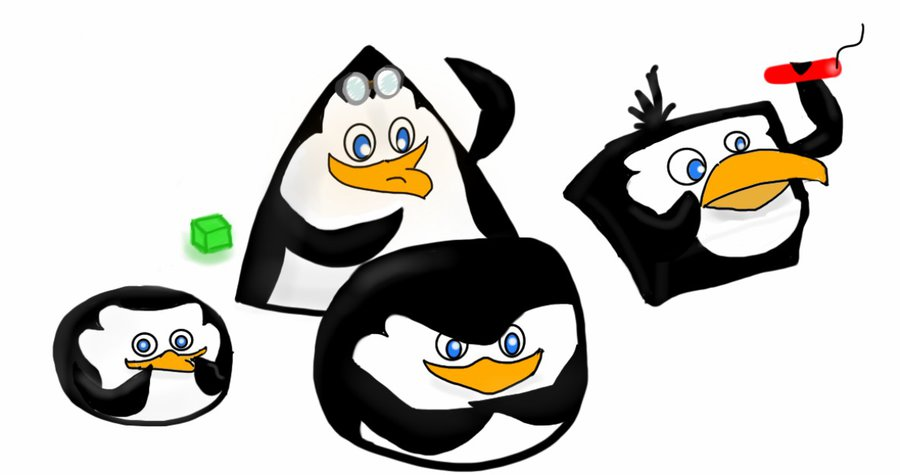 900x475 The Penguins Of Madagascar As Angry Birds By Fortheloveofpenguins