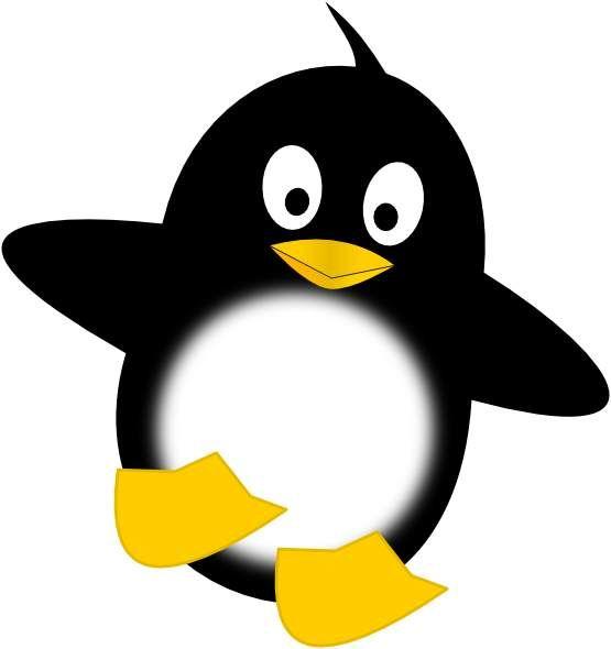 555x590 Unusual Clipart Penguin Clip Art Google Search Penguins