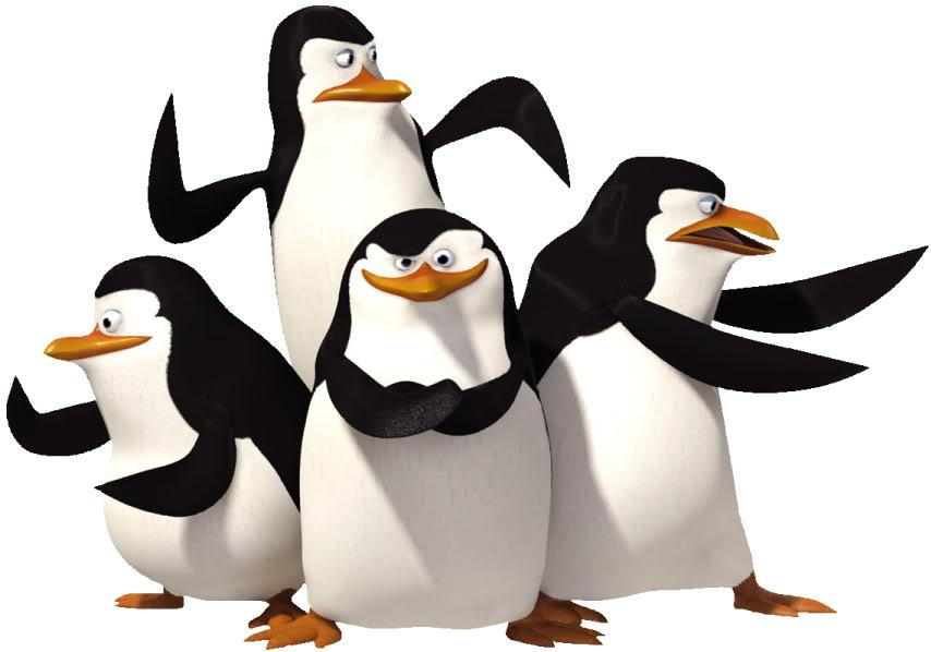854x598 Photo Madagascar Penguins 1. Clipart Panda