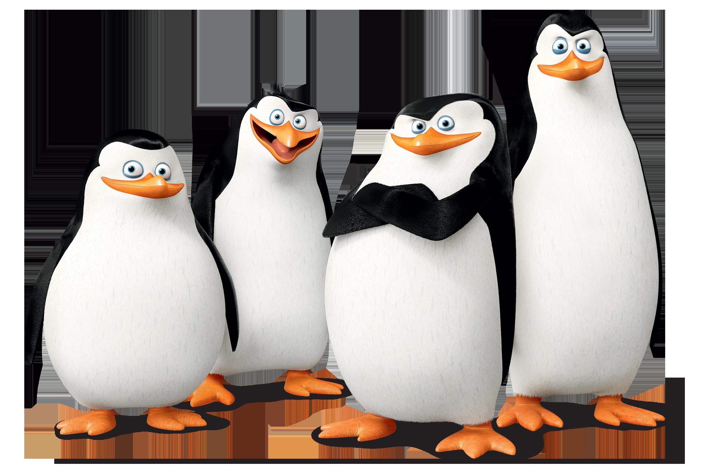 2500x1642 Madagascar Penguins Png Images Free Download