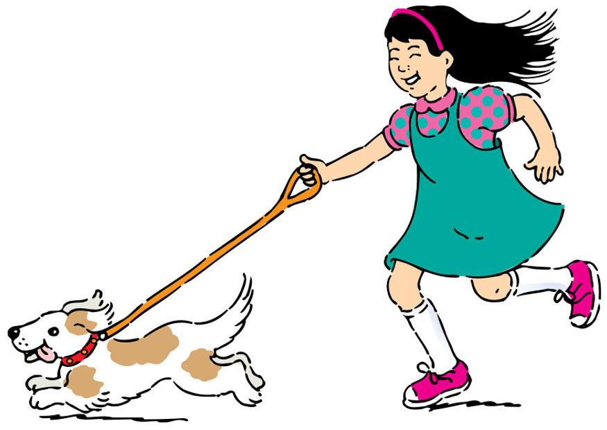 875x620 Image To Walk The Dog