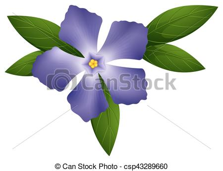 450x345 Periwinkle In Blue Color Illustration Clip Art Vector