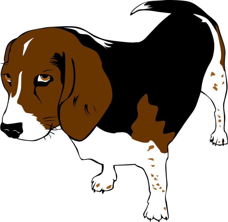 800x778 Free Clip Art Dog