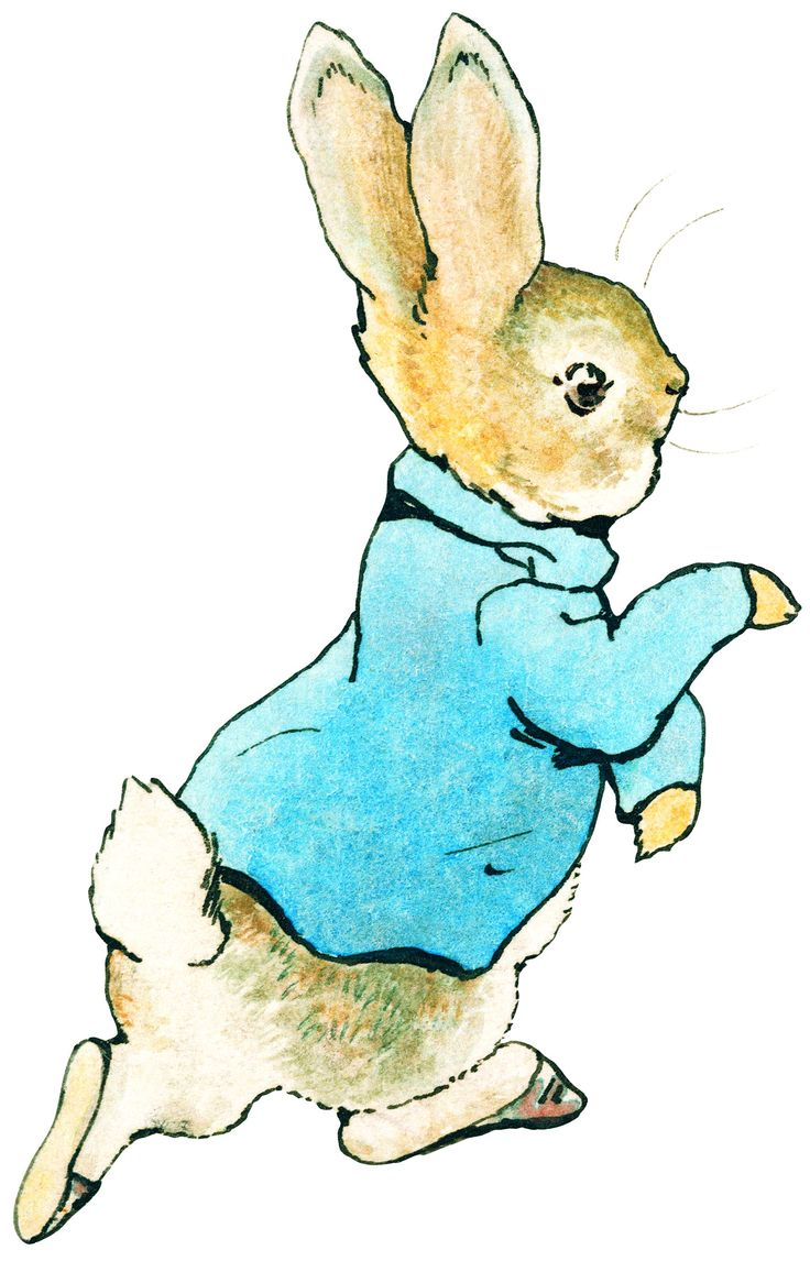 peter rabbit clipart at getdrawings com free for personal use rh getdrawings com peter rabbit clipart black and white peter rabbit clipart png