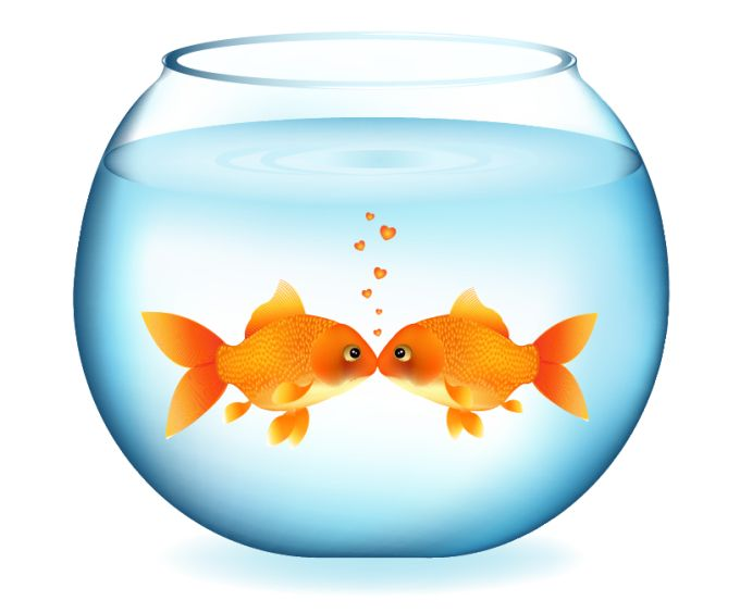 680x564 Fish Bowl Cat And Fish In Bowl Clip Art A Free Graphic From Pets 3