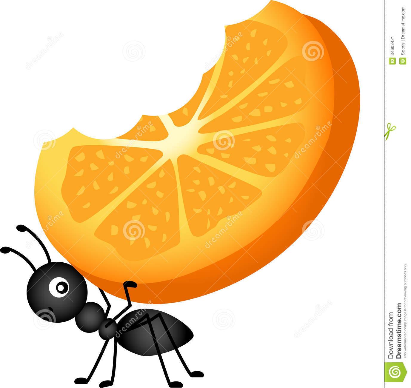 1377x1300 Picnic Ants Food Clipart