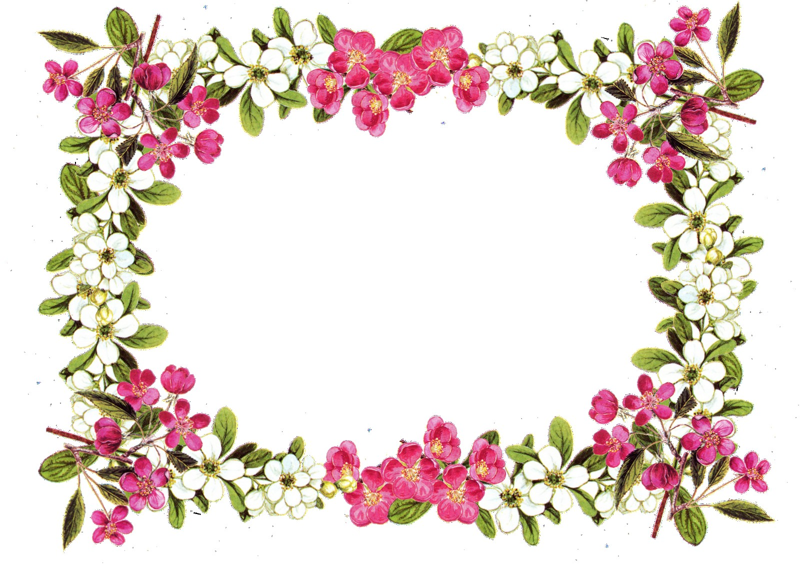 1600x1143 Free Printable Clip Art Borders Digital Flower Frame Png