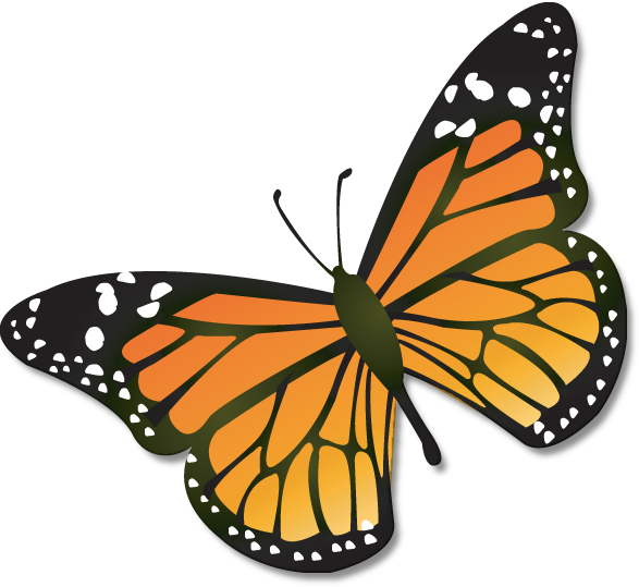 pictures of butterflies clipart at getdrawings com free for rh getdrawings com butterfly clipart pics butterfly clipart free download