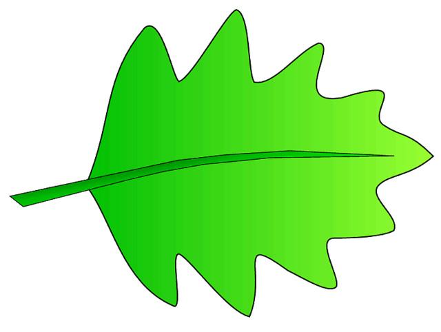 640x482 Pile Of Green Leaves Clip Art